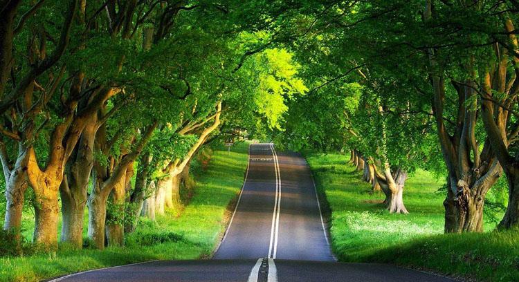 先行,让天更蓝山更绿水更清——新时代交通运输行业绿色发展的探索与实践